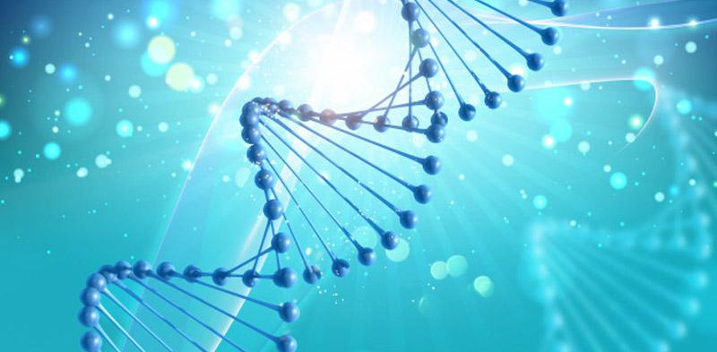 Biology Homework Help - Academics Hub