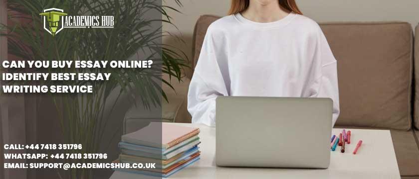 Academics Hub: Can You Buy Essay Online? Identify Best Essay Writing Service